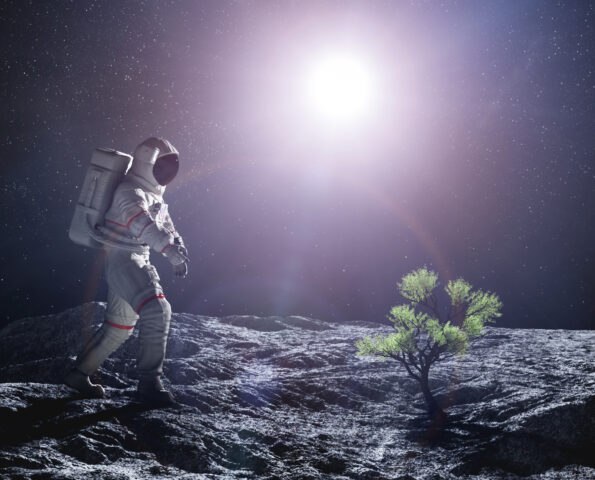 Astronaut exploring an alien planet. Green plant growing. Space colonization and travel of the future concept. 3D Illustration.